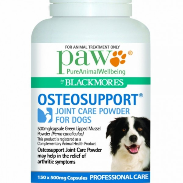 PAW osteosupport dog