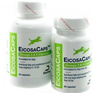 eicosacaps-omega-fatty-acids, big dog, small dog