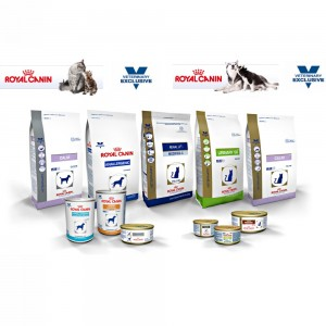 royal canin ready for shop