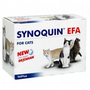 synoquin_efa_cat