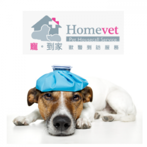 Yuen long veterinary services
